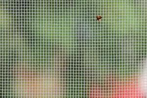 Milyen az ideális szúnyogháló?